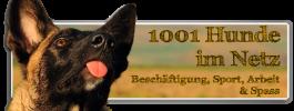 1001d